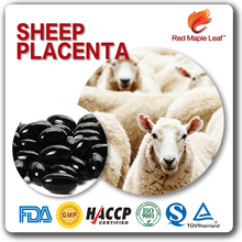 Private Label Sheep Placenta Softgel Capsules