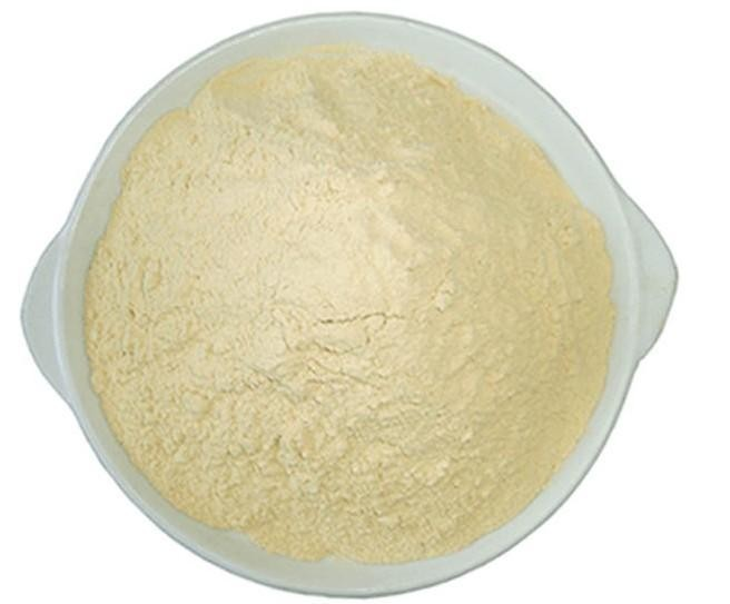 Chinese supplier natural white kidney bean extract powder phaseolamin 10:1 20:1, 1% 2%