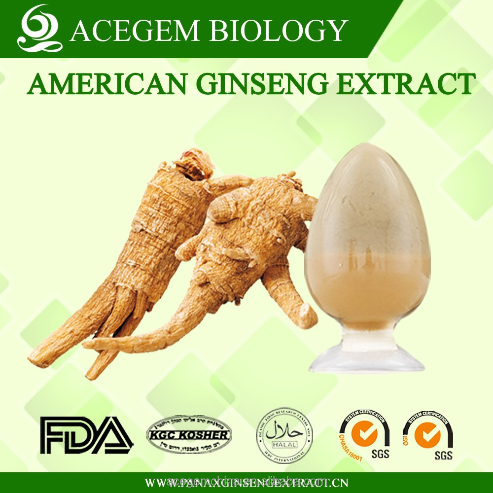 GMP certified herbs Organic supplements American Ginseng Whole-Part Extract