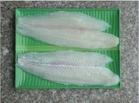 Sell frozen pangasius/ basa fillet