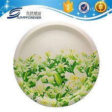 High quality beautiful cake melamine plate