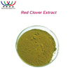 Competitive price Chinese supplier of trifolium pratense L debenzolized red clover extract powder