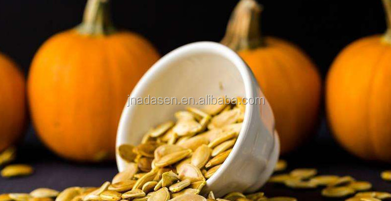 New products conveyor belt microwave roaster machine for pumpkin seeds
