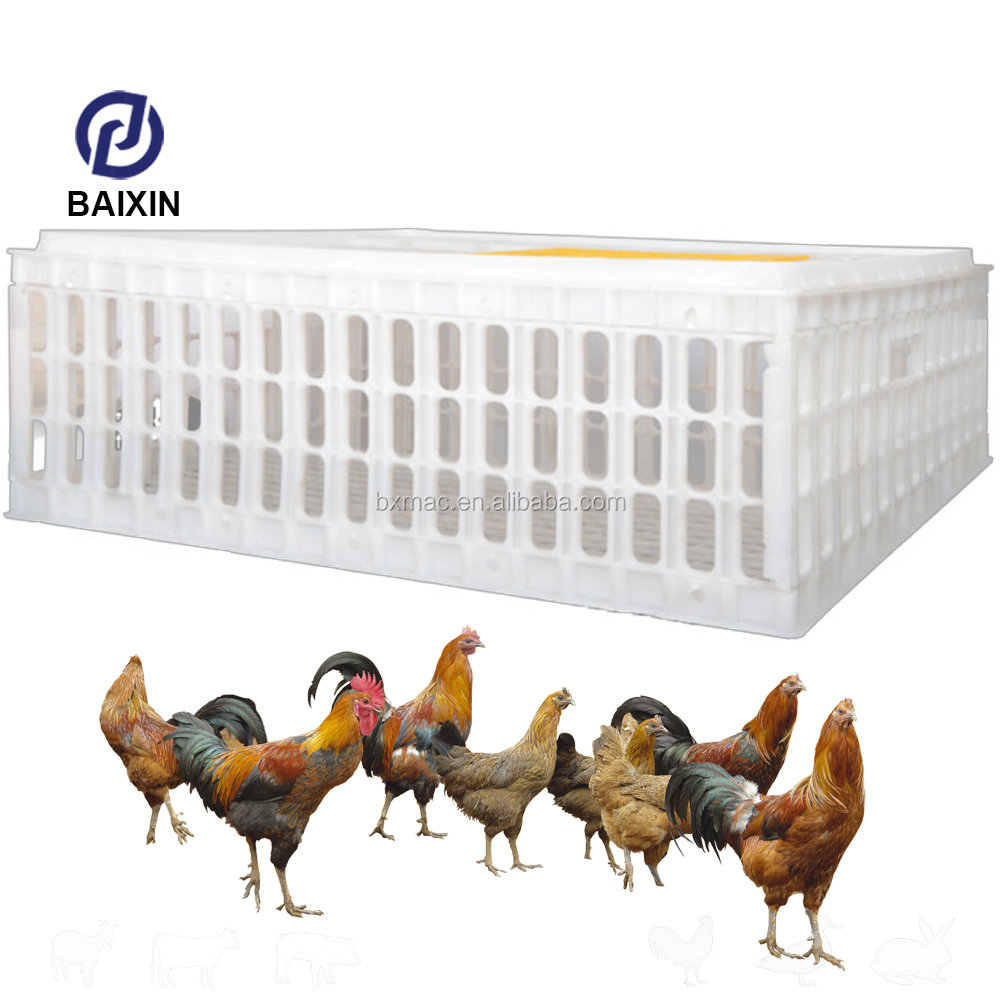 Poultry Transportation Cages Plastic Live Chicken Transport Cage Chicken Transport Basket Crate For Sale