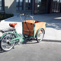 Practical classic 3 Wheel Electric Cargo Bike/Cargo Bicycle for sale