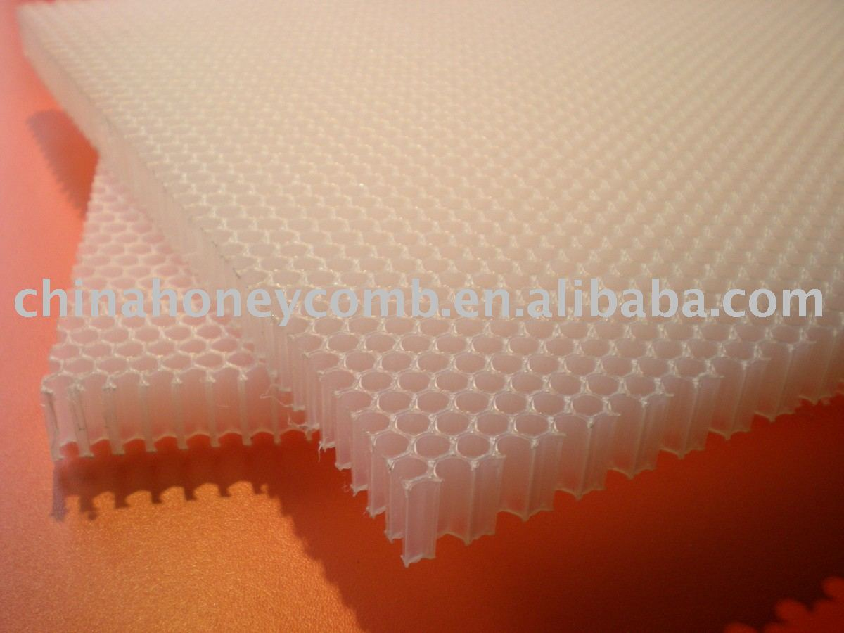 PP PC the plastic honeycomb core for building material decorative wall panels