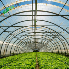 [manufacturer] Agriculture greenhouse poly tunnels