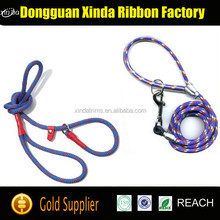 Free Sample Hands Free Dog Leash, Dog Collar Leash, Retractable Dog Leash