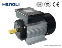 YL Alu Body Single Phase Water Pump Induction Motor