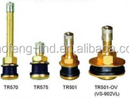 Tire valve -clamp in tubeless valves