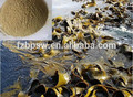 Feed grade kelp powder, fish feed|abalone feed|shrimp feed, seaweed powder type, kelp meal