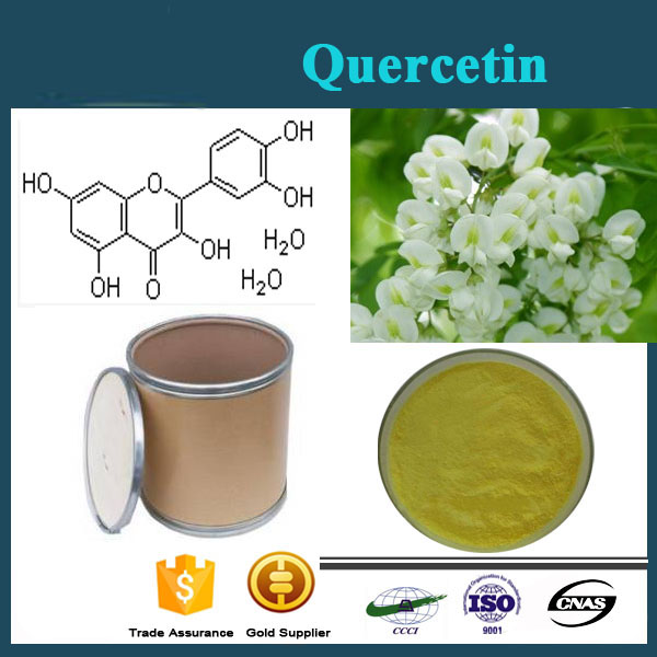 Lowest Price/Quercetin Plant Extract/Standard Quercetin Powder