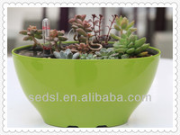 cheap colorful mini interior decorative pots