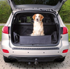 Dog Car Boot Protector suitable for most cars