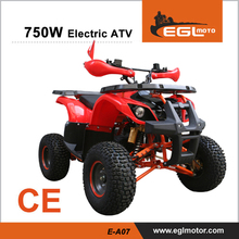 New Cheap 750W Brushless shaft drive Motor 48V Electric ATV with CE certificate