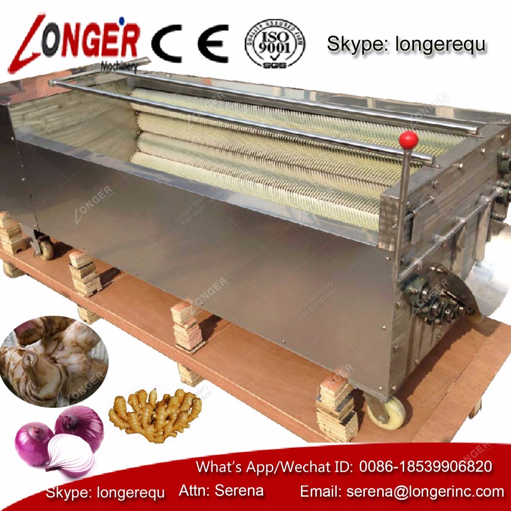 Vegetable and fruits washer, commerical washer, washer carrot ginger galanga