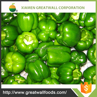 KOSHER whole frozen green pepper