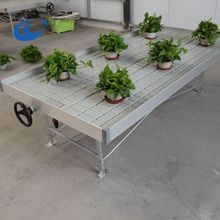 Movable Greenhouse Seeding Nursery Bed Growing Tables for Commercial plants Seedbed System