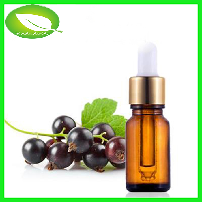 Organic black currant oil black currant fruit oil black currant seed oil