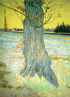 Natural scenery painting Trunk of an Old Yew Tree by Van Gogh