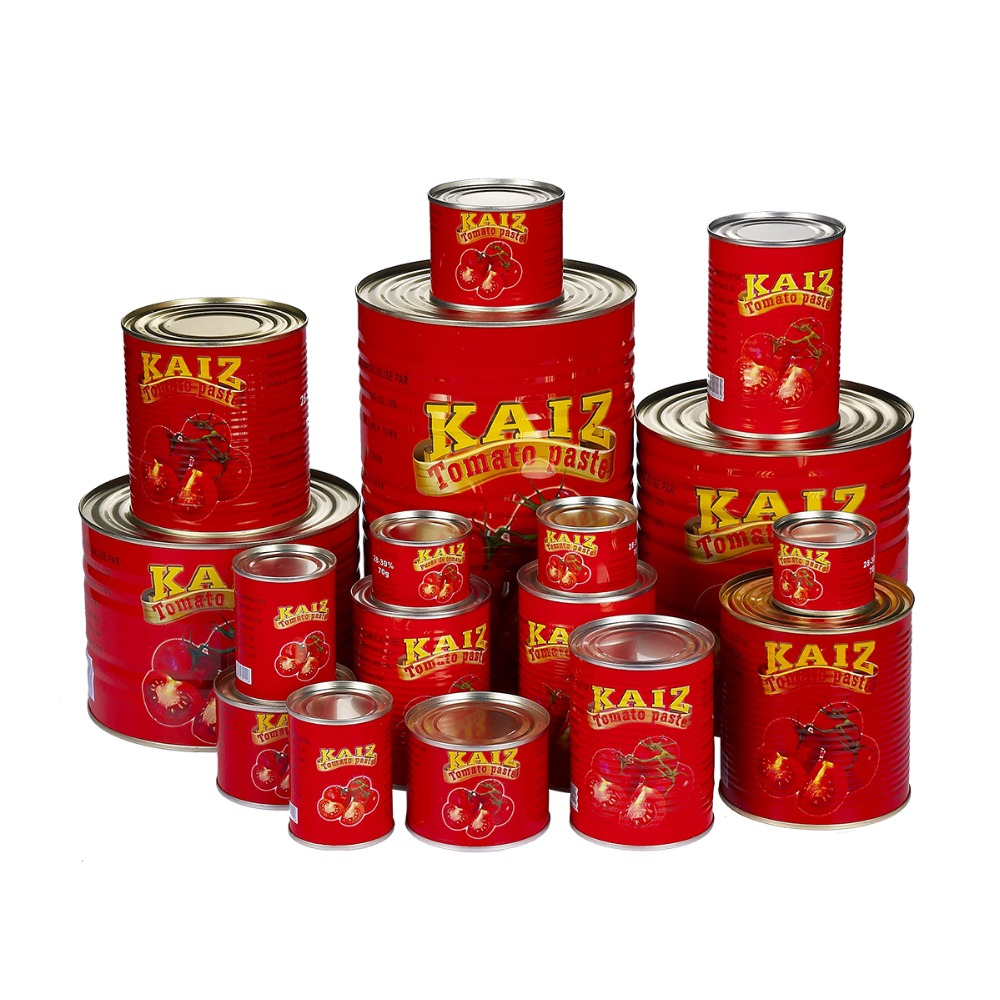 canned tomato paste factory for West Africa