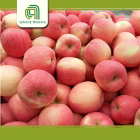 Hot Sale Fresh Fuji Apple products,Chinese Fruit Fuji Apple Supplier Grade A Fresh Apple