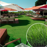 Waterproof Fake Grass Carpet for Landscaping