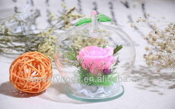 100% Natural Apple-box Real Preserved Flowers In Glass Wholesale ...