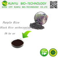 GMP Factory direct sale Pure natural organic purple rice Extract Anthocyanidins purple rice powder 5% UV CAS: 528-28-5