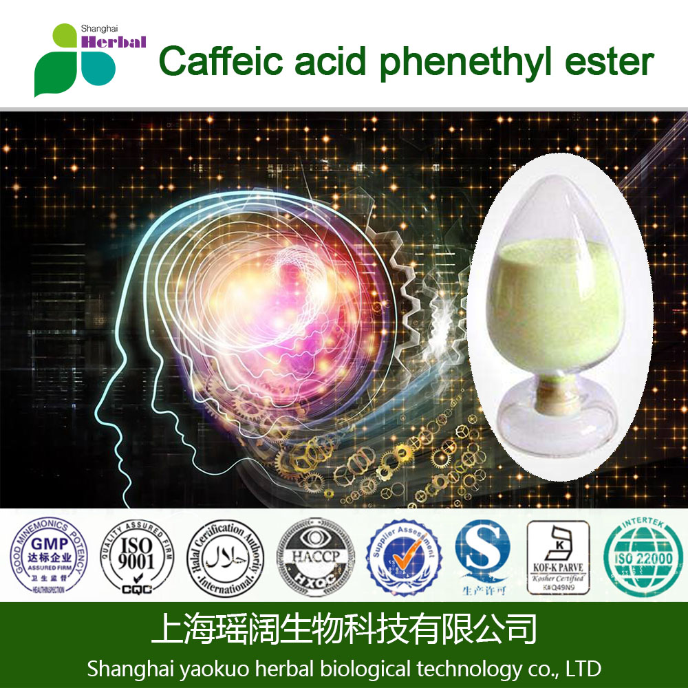 Bottom and reasonable price CAPE/Caffeic acid phenethyl ester CAS#104594-70-9/115610-29-2 stock immediately delivery!!!