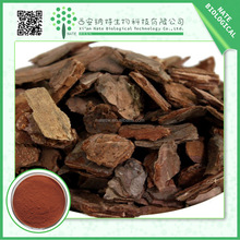 Factory supply 100% Natural pine bark extract Proanthocyanidins 95%