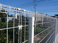 2D Welded Double horizontal wire fence/Pvc coated twin wire 868/656 fence panel/twin wire surround mesh