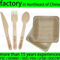Food Grade Disposable Wooden Cutlery, Disposable Wooden Cutlery Spoon Fork Knife