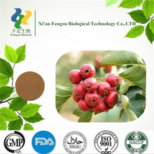 100% Natural fresh hawthorn berry