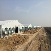 Convenient installation automatic prefab steel frame poultry cage designed for layer chicken