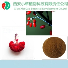 40 years experice Cornus Officinalis P.E. 4:1,Chinese herb medicine,dogwood fruit extract