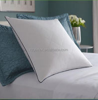 Hot Selling White Duck Down Cushion