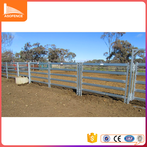 Galvanized cattle yard panels stock panel