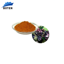 2017 Hot Selling proanthocyanidins 95% OPC Powder