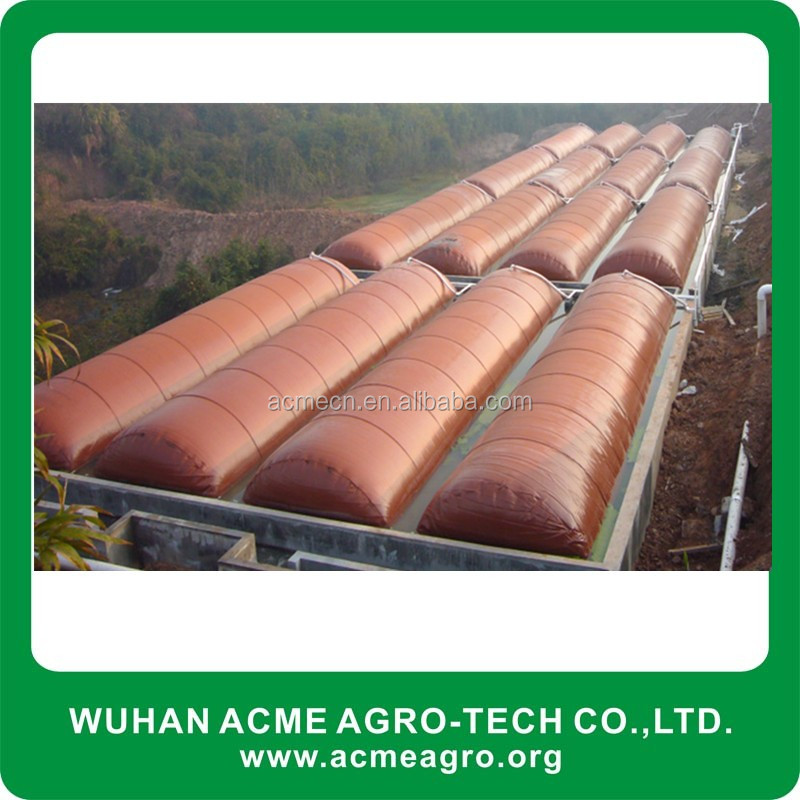 ACME cheap Soft PVC Biogas Power Plant bioags digester