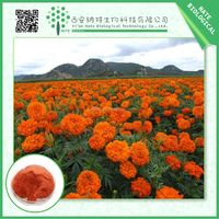 Professional herb extract manufactures High quality Marigold Extract Lutein orange pigment