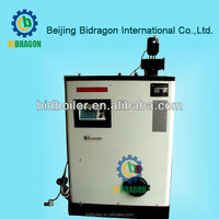 China bidragon small pellet fired steam boiler for sale