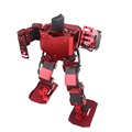 17DOF Fighter Humanoid Robot Support Blockly Programming Robot Kit
