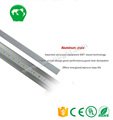 High brightness outdoor decoration small led bulb light 10w 4ft led tube lights