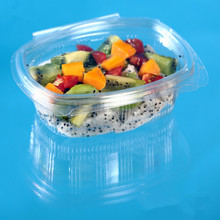 250g Blister Disposable Plastic Salad Packaging Box with Clear Hinged Lid