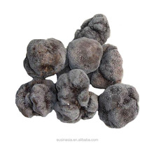 New Matured wild frozen truffle
