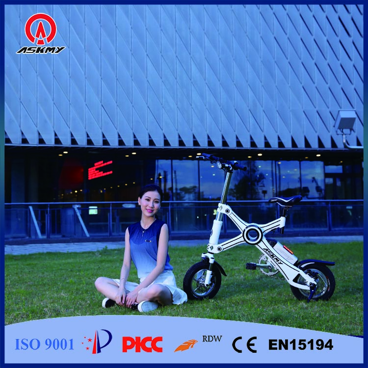 OEM Wholesale Cargo Electric Bicycle, E Cargo Bicycle Cheap, Hot Electric Cargo Bicycle
