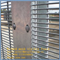 Color customized enclosure protective metal screen visible low cost popular outdoor wire mesh dividers as wall panels