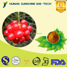 FDA Certified Free Sample Hunan Supplier fructus schisandrae chinensis fruit P.E. Curing Night Sweating