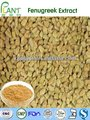 GMP Manufacturer 100% Natural fenugreek extract
